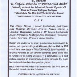 D. ANGEL RAMOM CARBALLADA BOAN