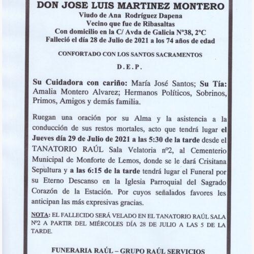 EL SEÑOR DON JOSE LUIS MARTINEZ MONTERO